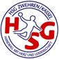Logo der HSG Zwehren/Kassel